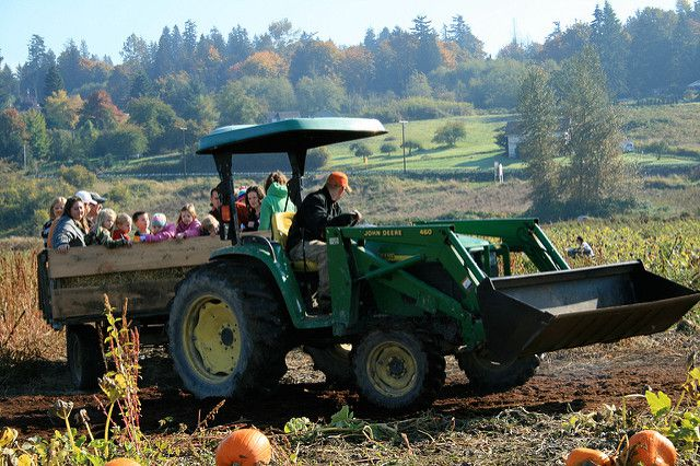 People on a hayride in a tractor