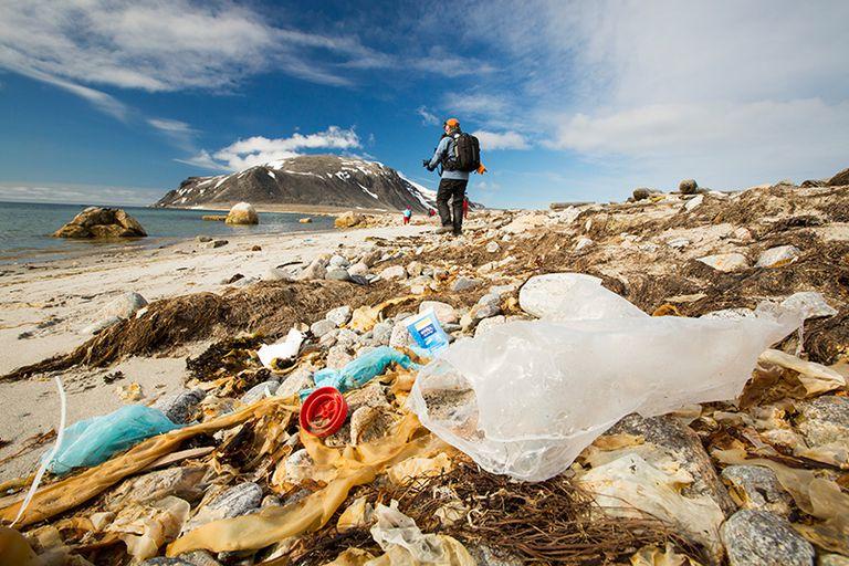 El Ártico es un 'callejón sin salida' para Ocean Plastic