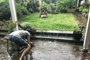heavy rain in the backyard