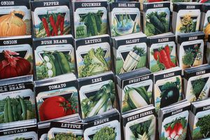 Seed packets arranged in a store display