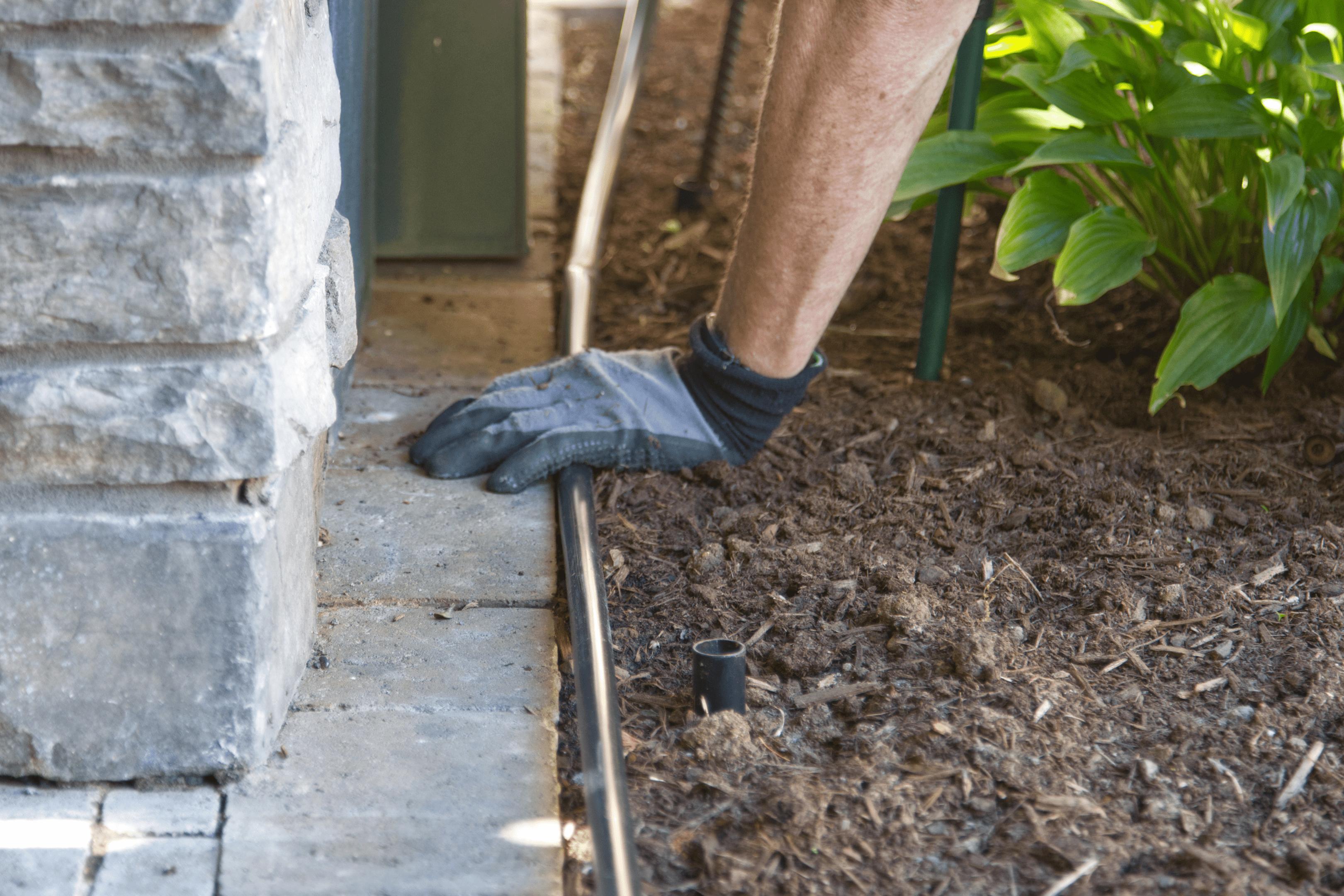 hands in gardening gloves place hose around plants in garden