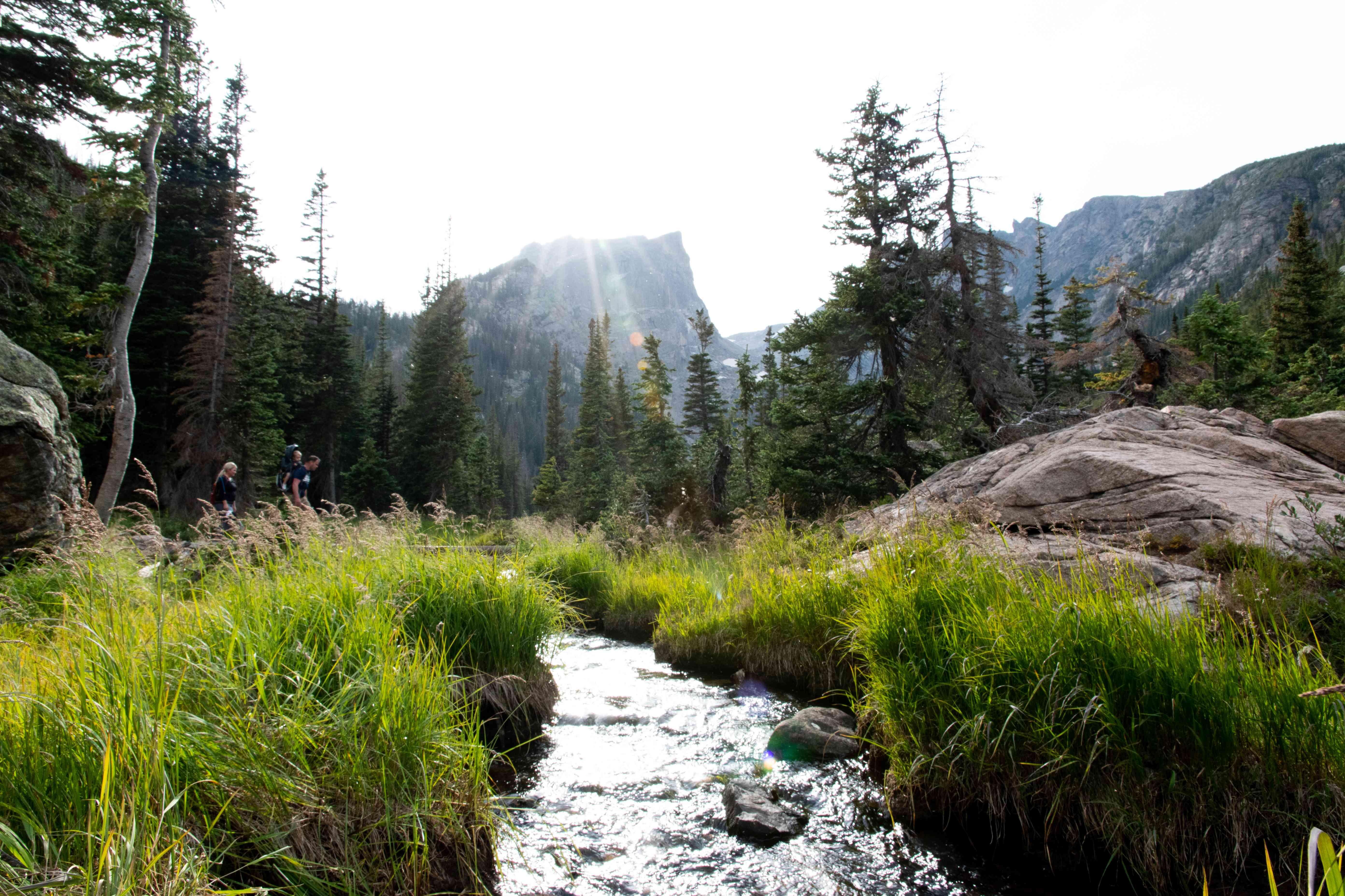 landscape shot of running stream in mountainous landscape