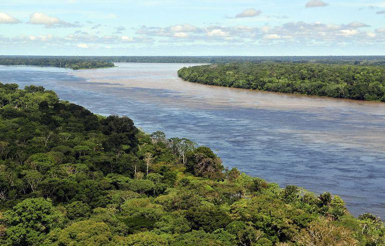 10 preguntas para el autor de 'The Last of the Tribe: The Epic Quest to Save a Lone Man in the Amazon'
