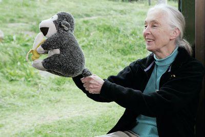 Jane Goodall with stuffed monkey