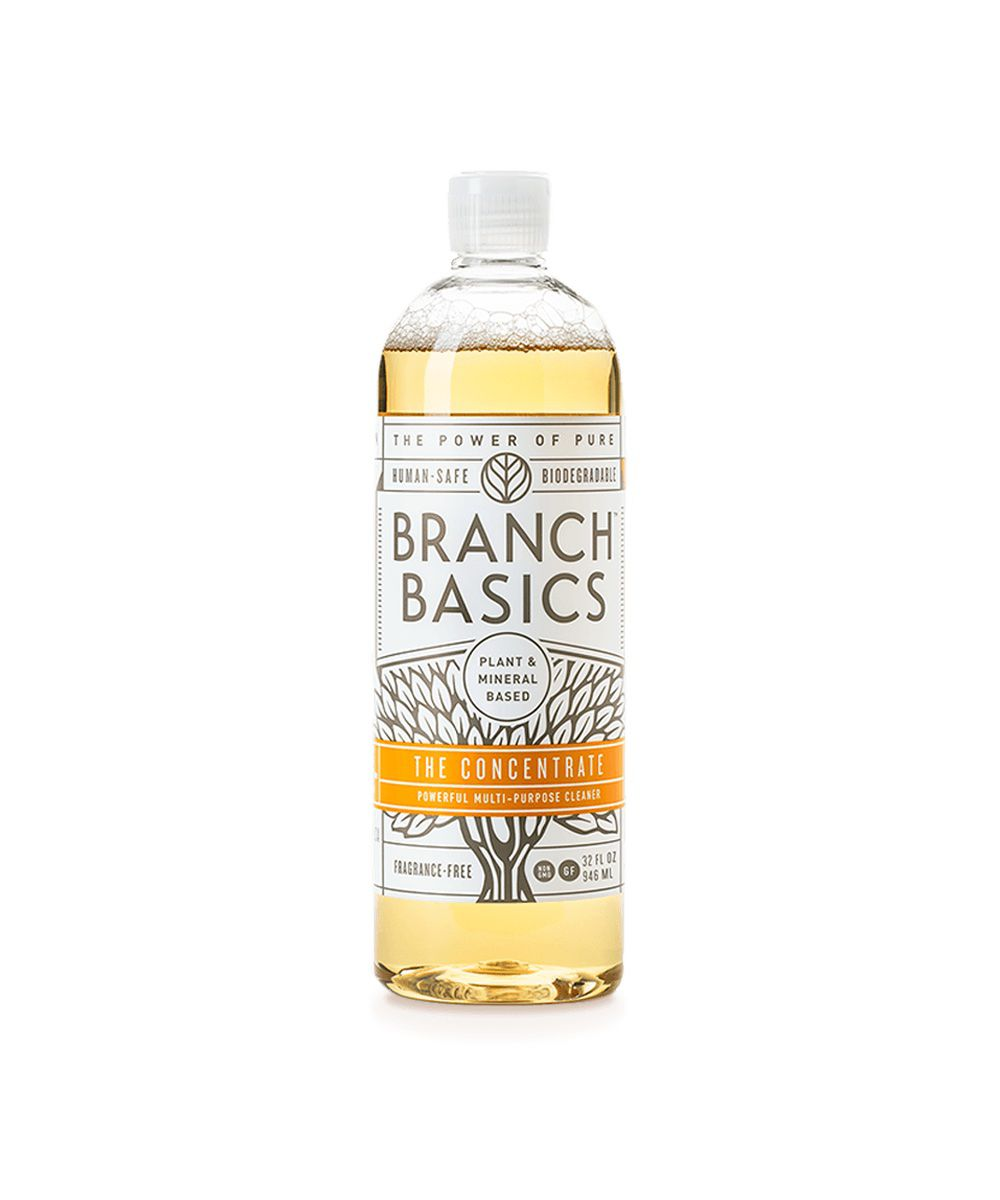 Branch Basics The Concentrate