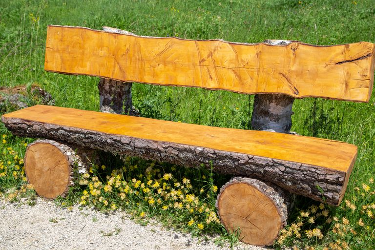 Wooden bench made from a tree