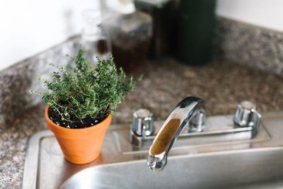 terracotta planter of thyme on kitchen sink