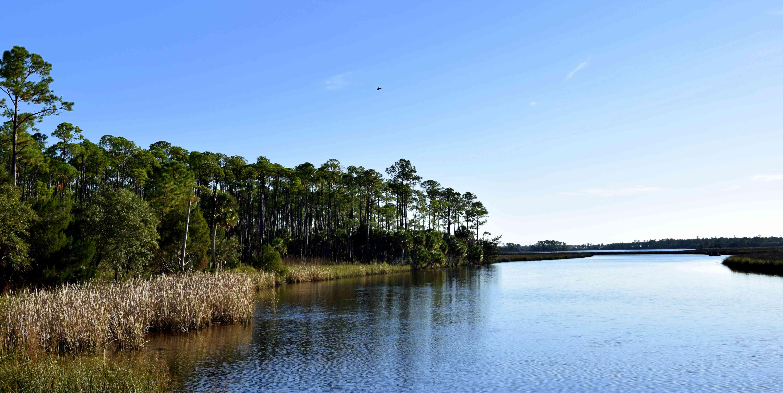 Apalachicola River paddling trail