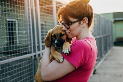 pet adoption agencies