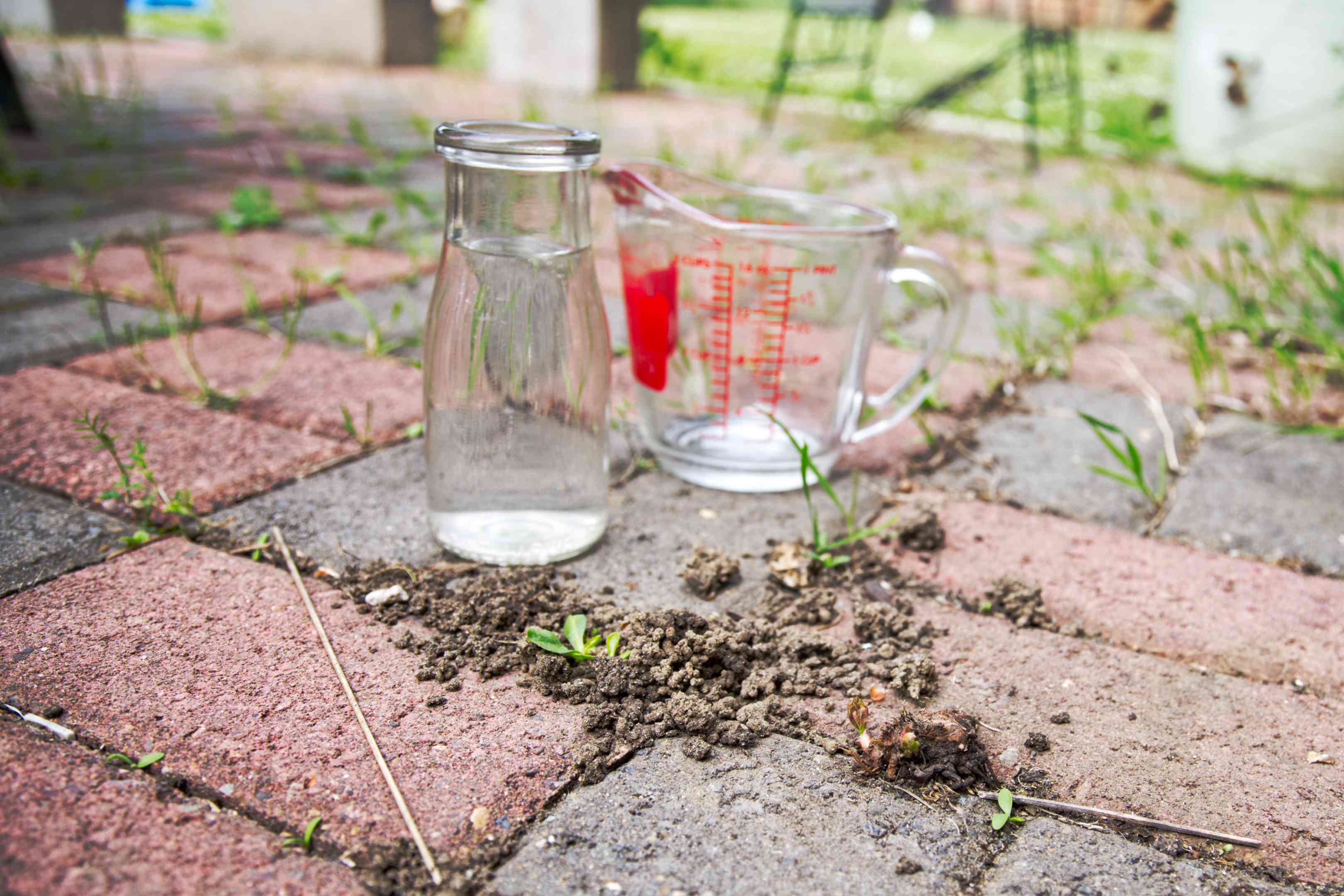 upcycled milk jar with white vinegar and measuring cup on brick patio outside