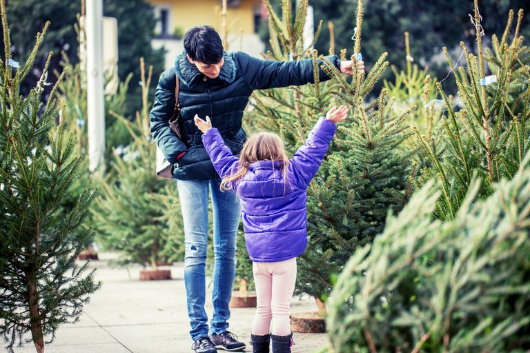 A mother and daughter picking a live Christmas Tree.
