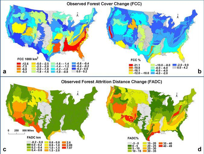 Graphic showing forest loss in the United States from 1990 to 2000.