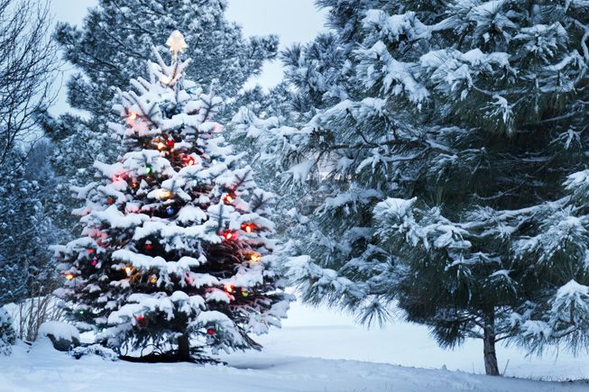 who s going to get a white christmas who s going to get a white christmas