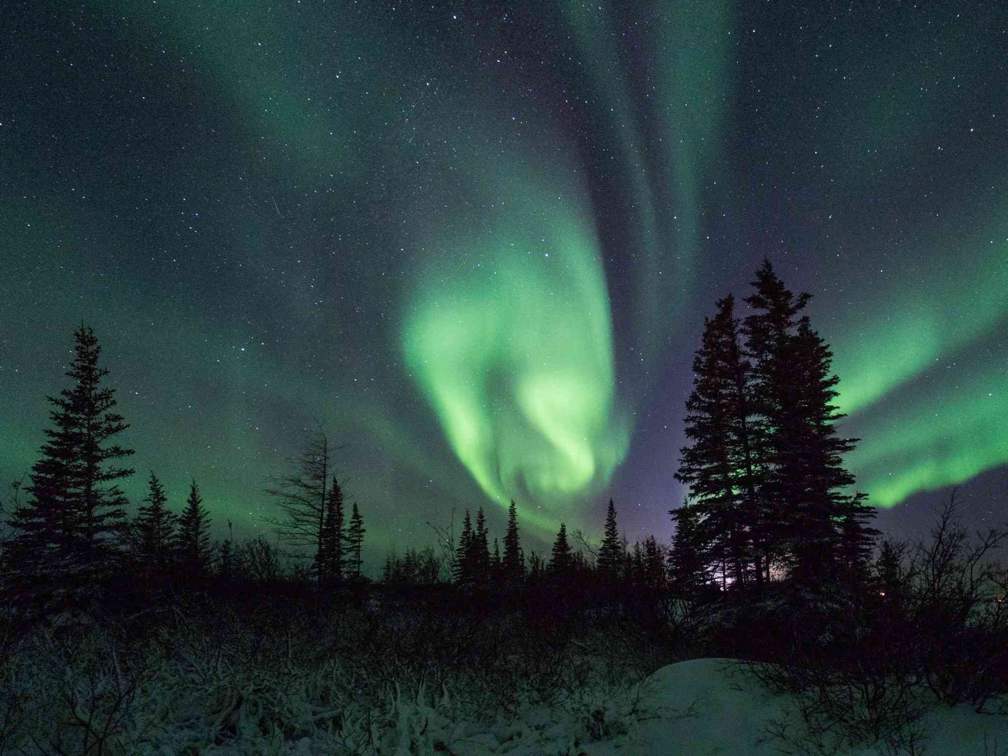 Watch LIVE on the Northern Lights cam.