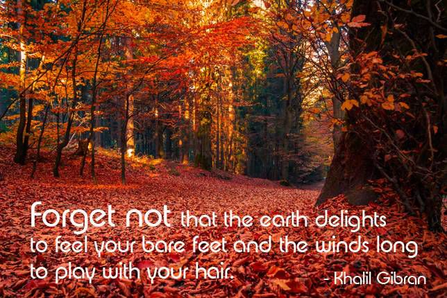 Forget not that the earth delights to feel your bare feet and the winds long to play with your hair. Khalil Gibran