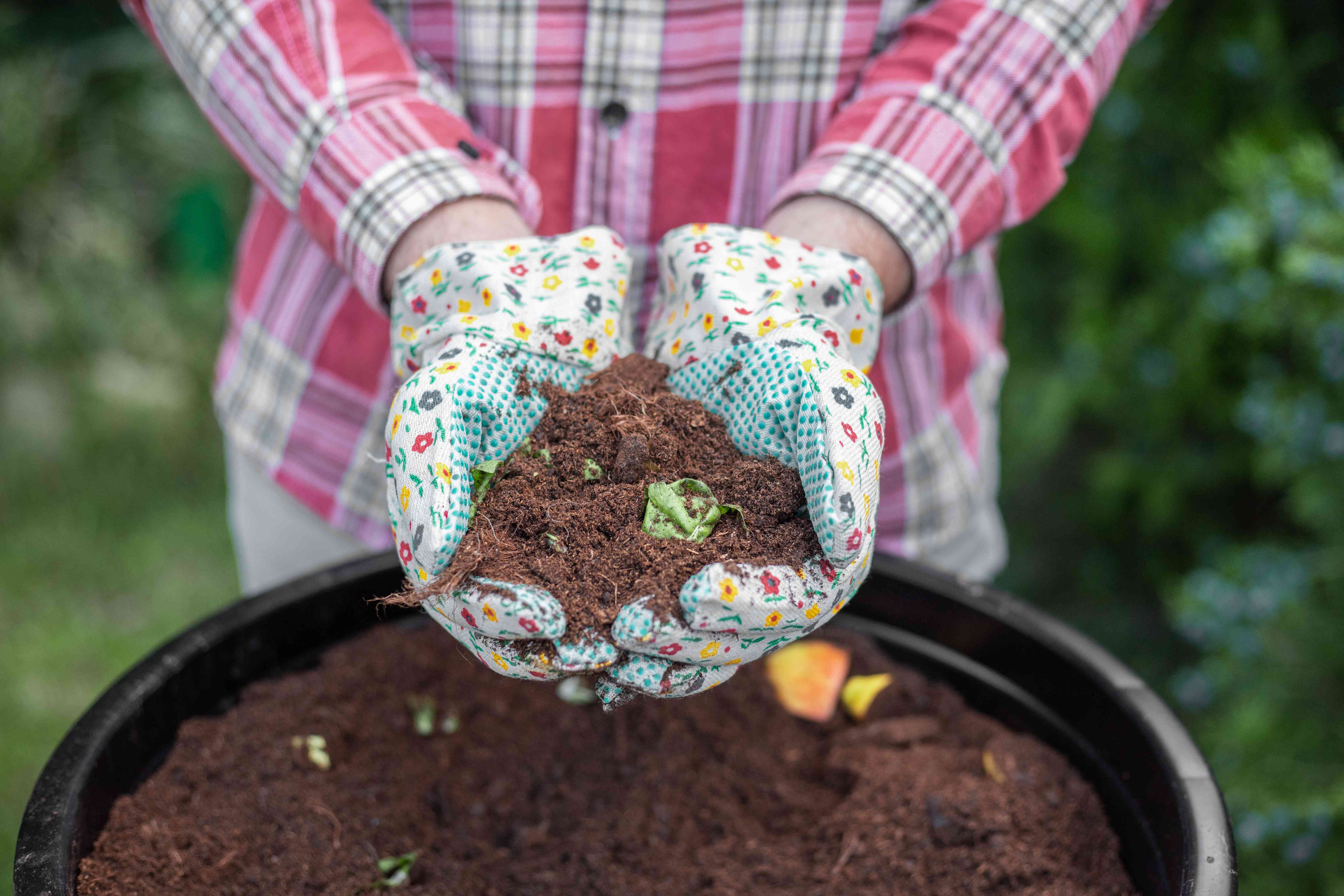 person in plaid shirt with gardening gloves shows off fresh compost in black bucket