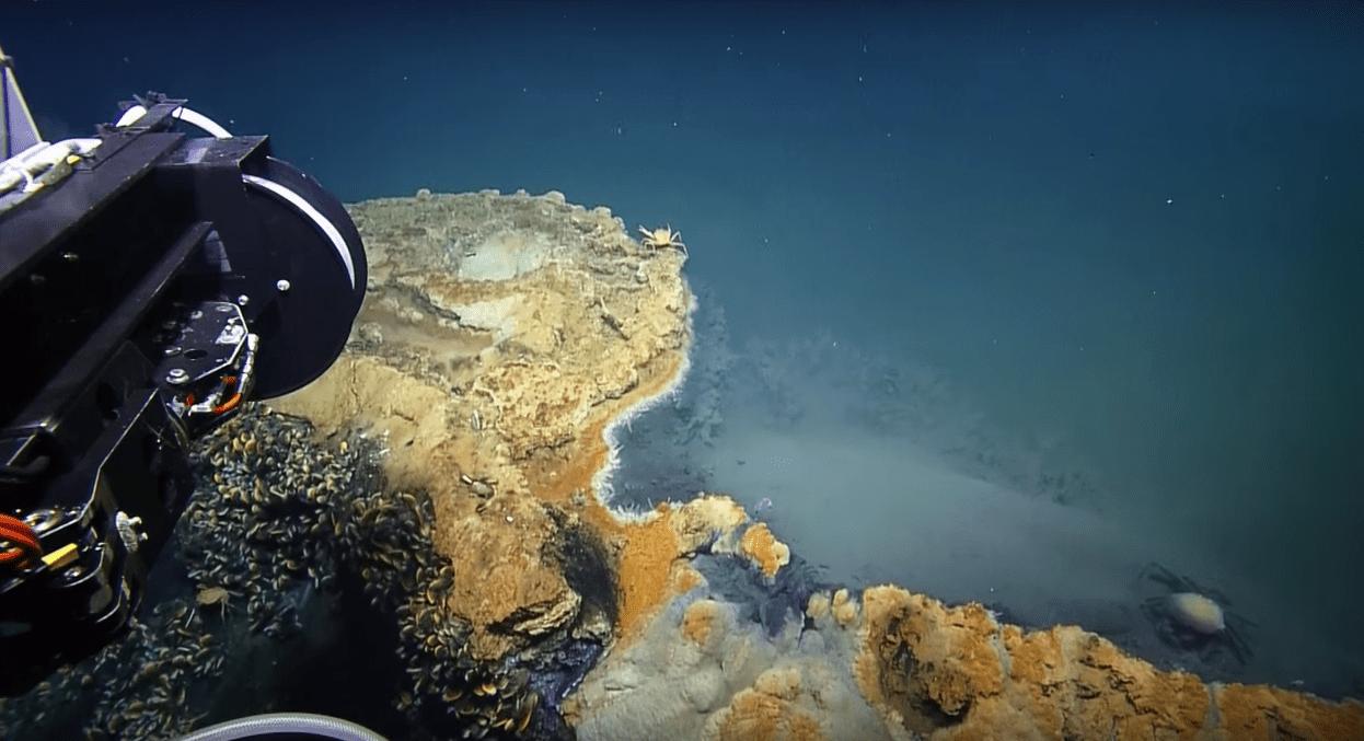 Bizarre 'Lake Under the Sea' Kills Whatever Swims There