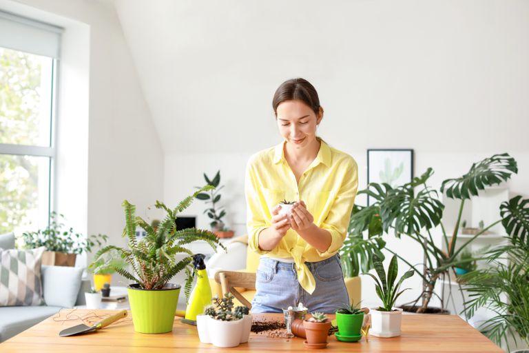 Por qué debería hablar con sus plantas