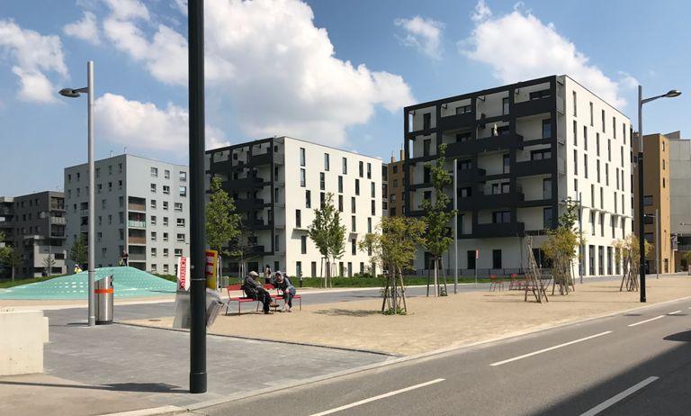 Little Buildings in Aspern Seestadt