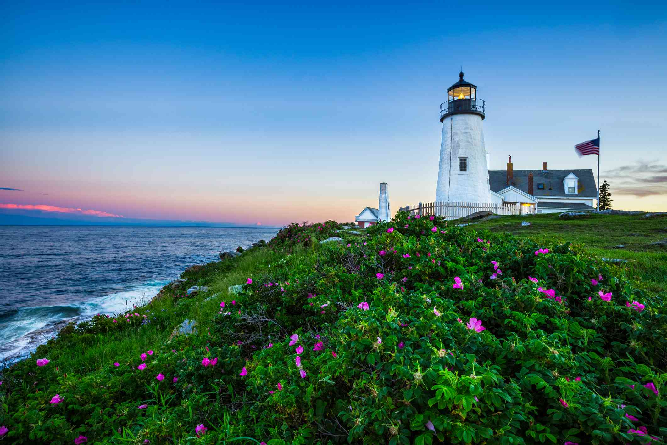 Pemiquid Point Lighthouse in background with green plants and pink flowers in foreground