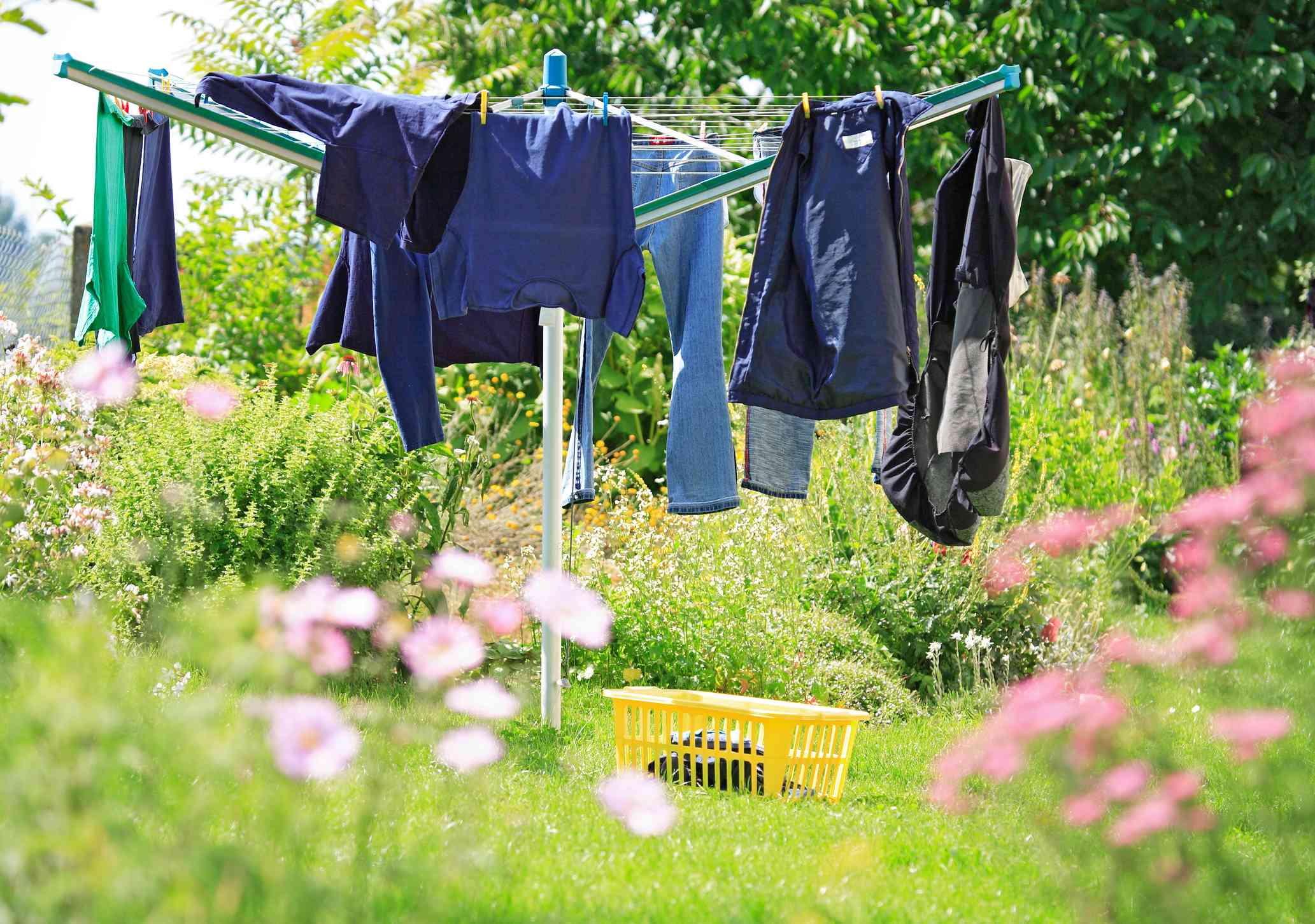 Clothes hanging in a garden on a hills hoist.