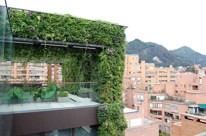 Rooftop balcony with a green wall