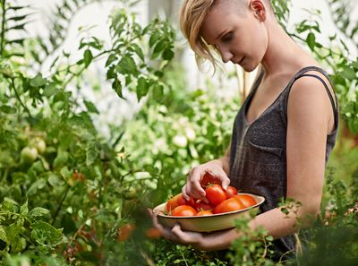 A woman looking at fresh tomatoes