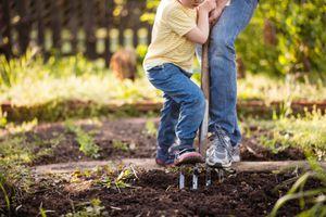 digging in a garden