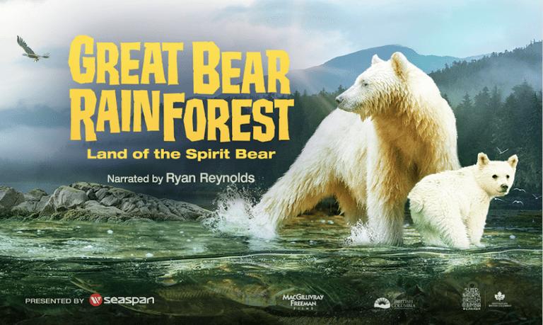 Nueva película IMAX, 'Great Bear Rainforest', revela la maravillosa costa del Pacífico norte