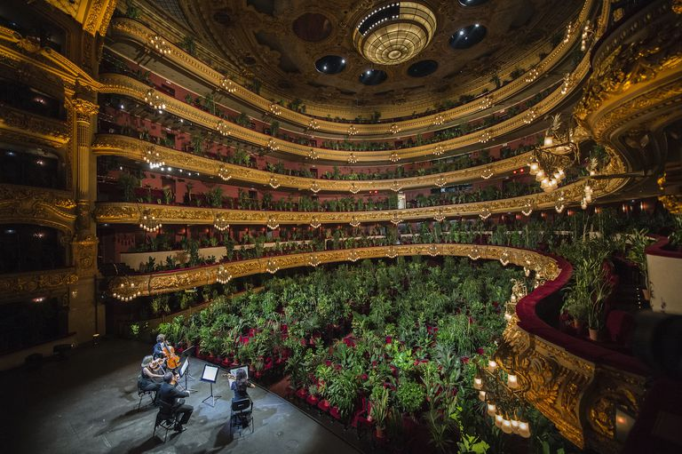Concert for plants at Barcelona Opera