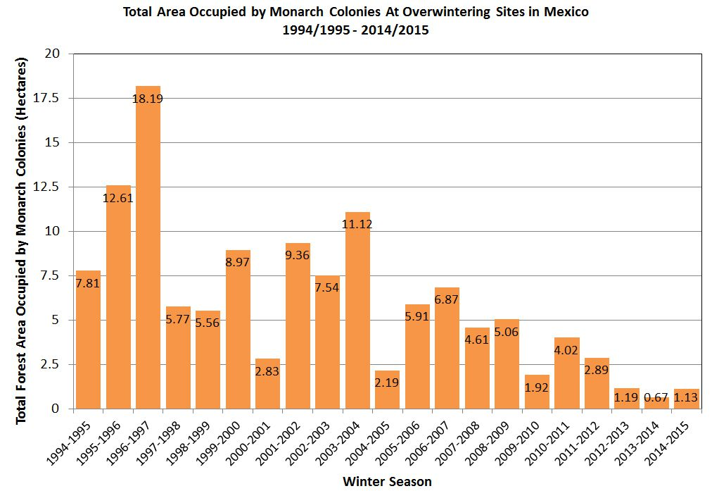 monarch butterfly population graph