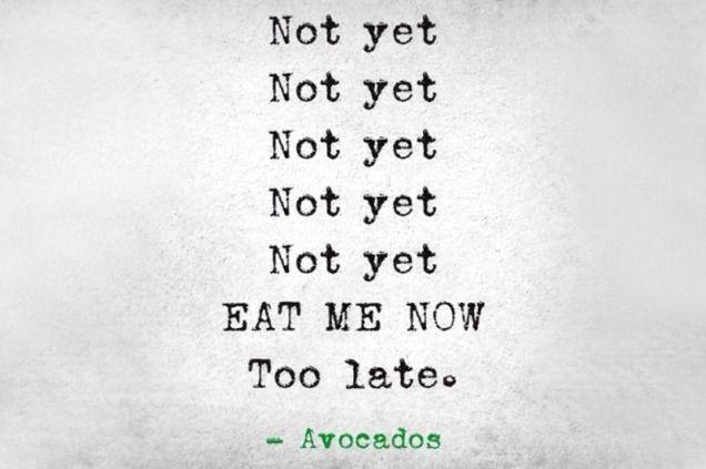 funny avocado ripening chart