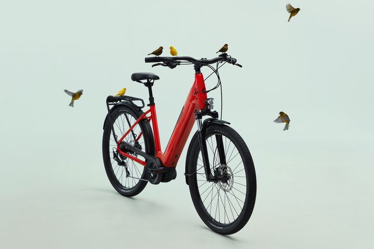 Cannondale Neo with birds