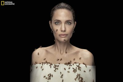 National Geographic's exclusive World Bee Day interview with Angelina Jolie.