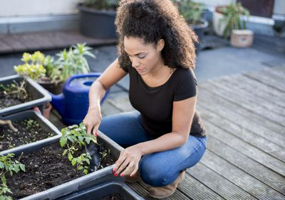 young woman is gardening on her urban rooftop