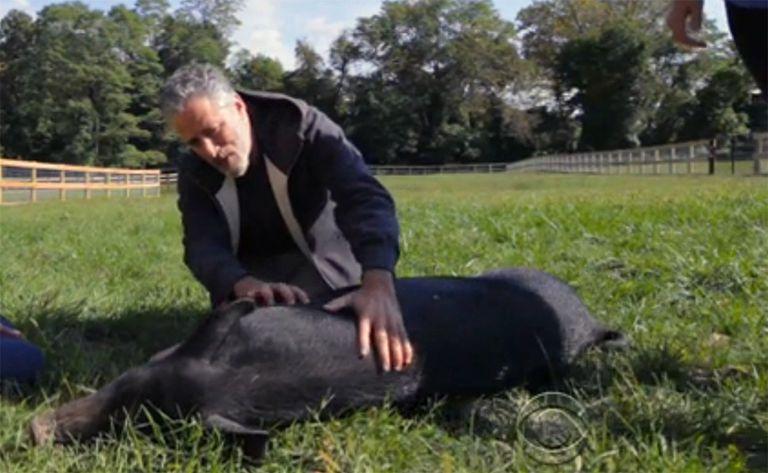 Un adelanto de la granja de rescate de animales de Jon Stewart