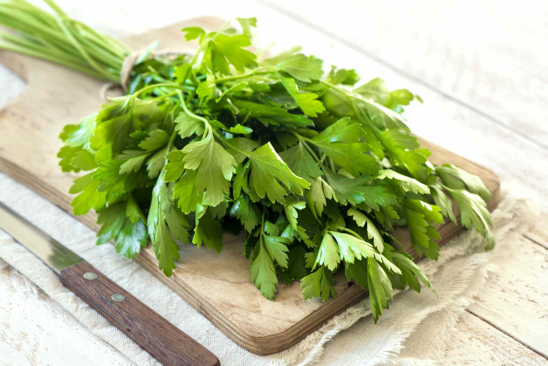 Bunch of Italian parsley closeup on rustic wooden table