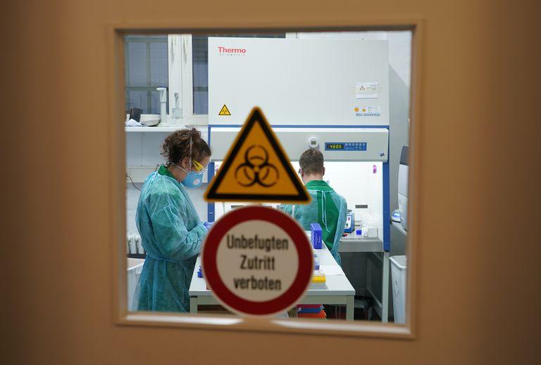 QUIÉN dice que los 'pasaportes de inmunidad' del coronavirus son una mala idea