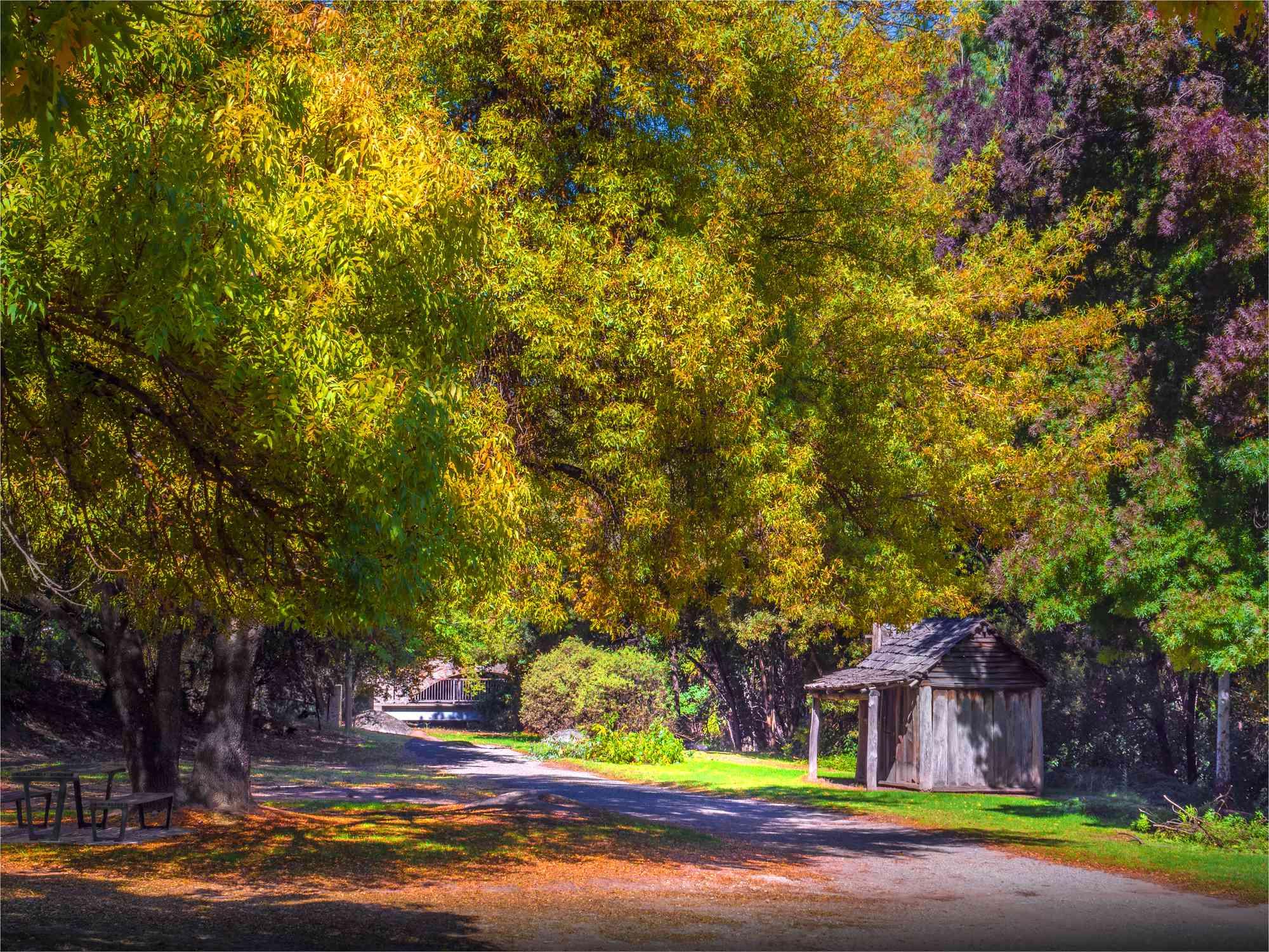 Quiet park in the town of Yackandandah, Australia