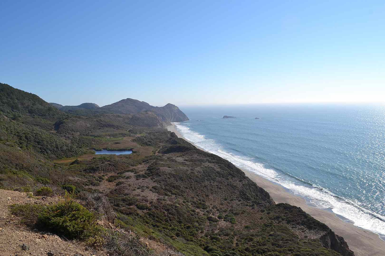 Wildcat Beach on the Point Reyes National Seashore with a clear blue sky, rugged hills, and blue surf