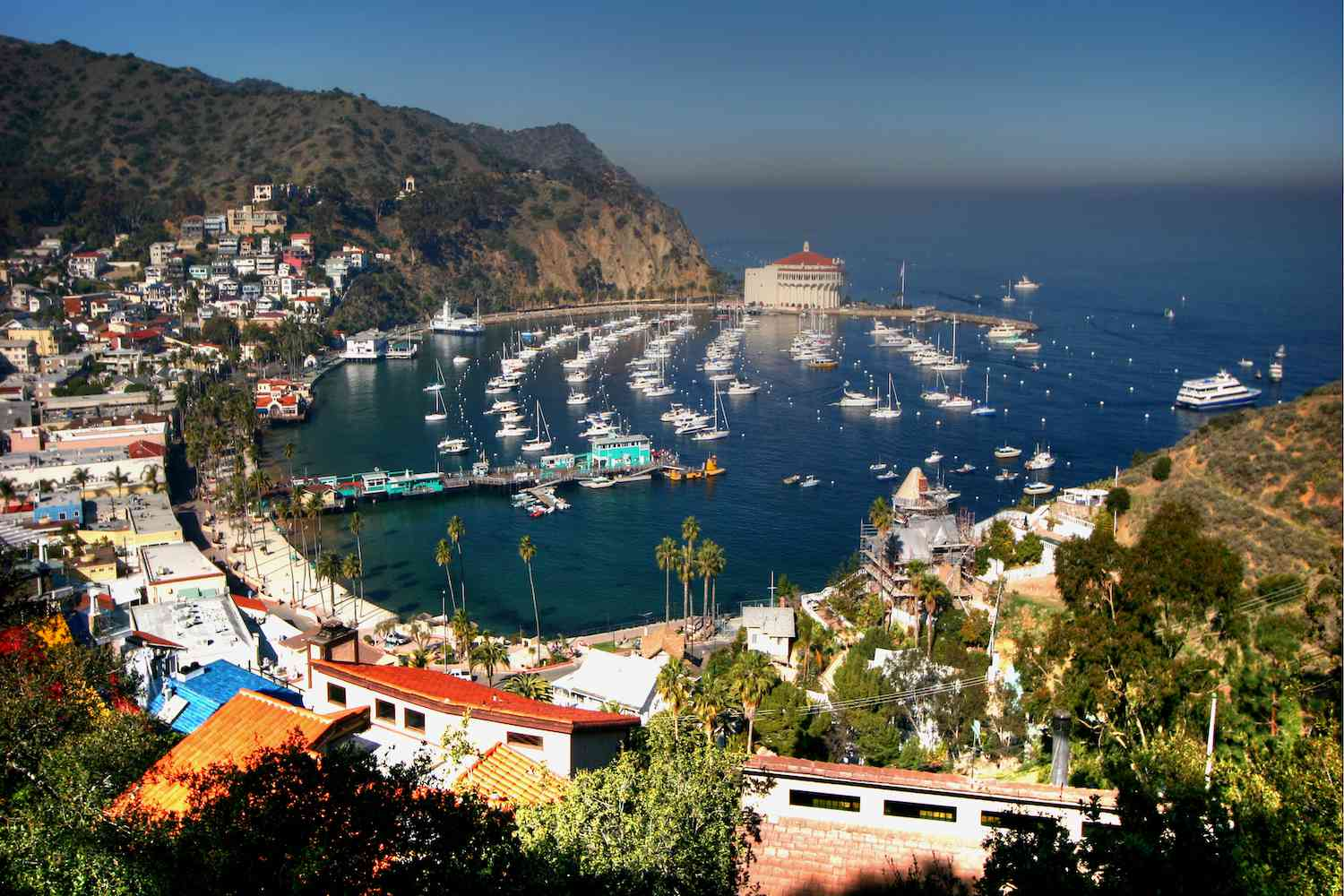 Sailboats sit in the harbor of Catalina Island