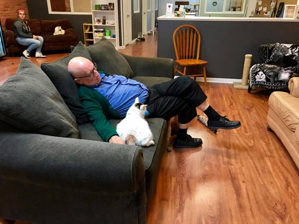 Terry Lauerman naps with a kitty at the Safe Haven Pet Sanctuary
