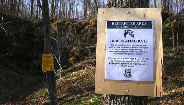 WNS cave closure sign