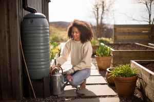 Woman uses a rain barrel