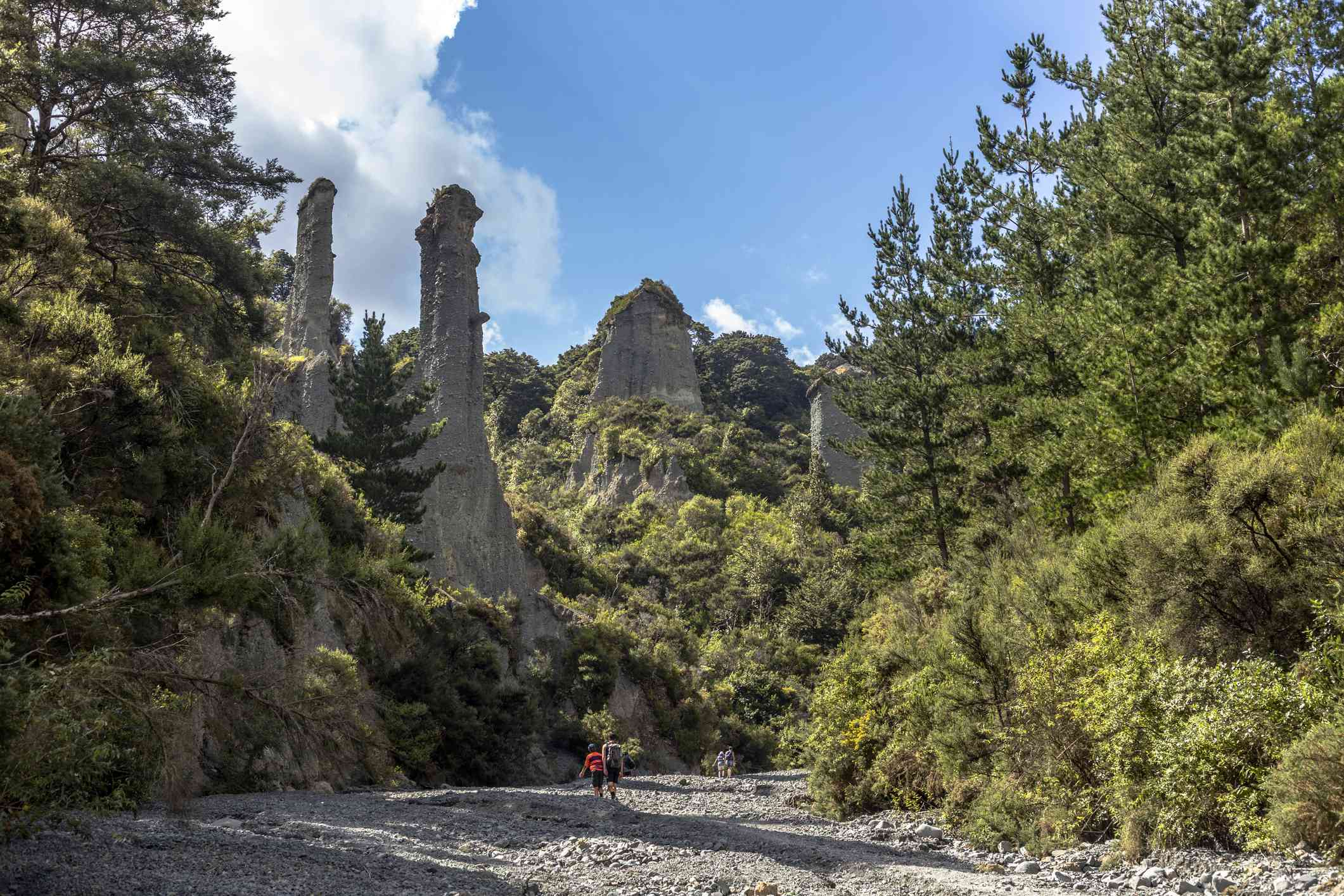 Two tourists on a trek in the Putangirua Pinnacles, large geological formations surrounded by a forest of green trees, in Aorangi Forest Park
