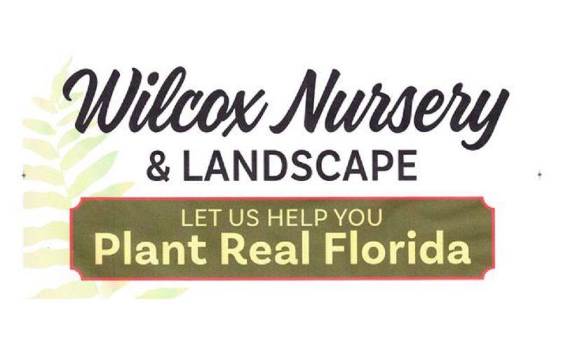 Wilcox Nursery
