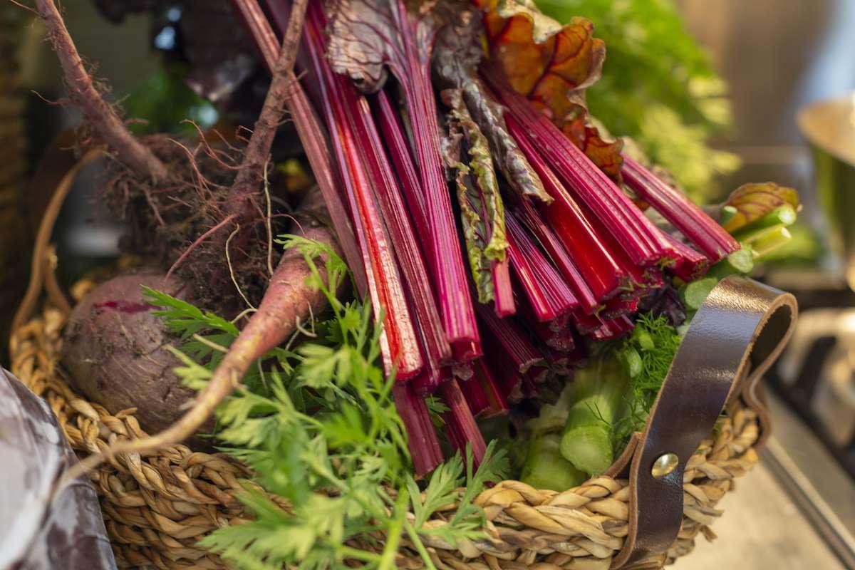 fresh vegetable rhubarb and beetroot