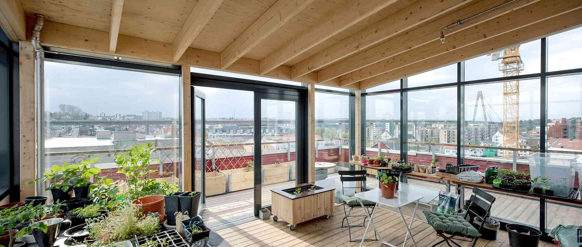 Vindmøllebakken Cohousing Project by Helen & Hard Architects greenhouse