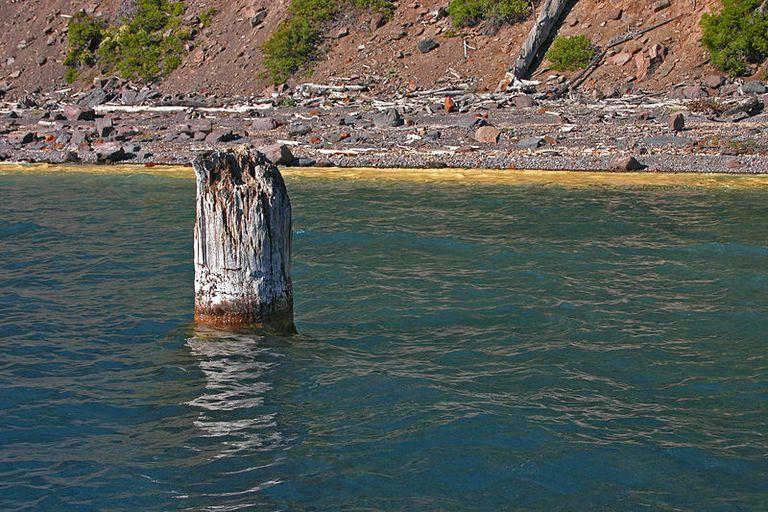 Sumérgete en el misterio eterno del anciano del lago