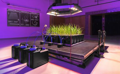 Disnovation vertical farm